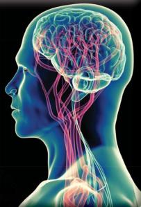 Resized Brain oximitry